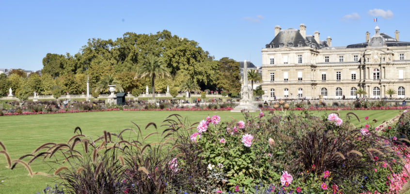 French Class and the Jardin du Luxembourg