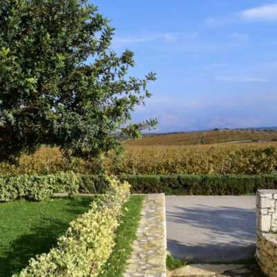 lyrarakis winery