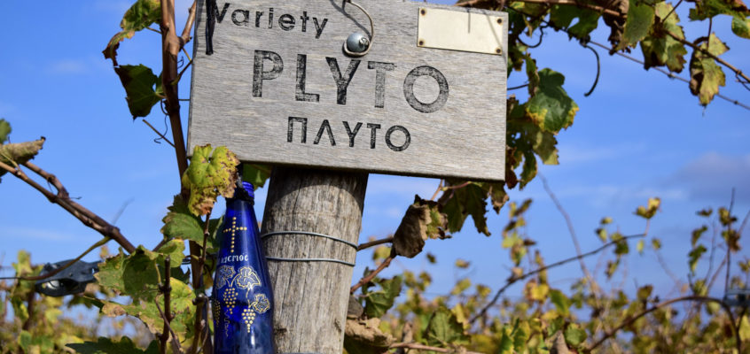 Four days in Crete: Lyrarakis Winery
