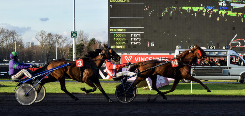 A Day at the Races: Hippodrome de Vincennes