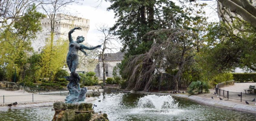 Provence: A Glorious Day in Avignon